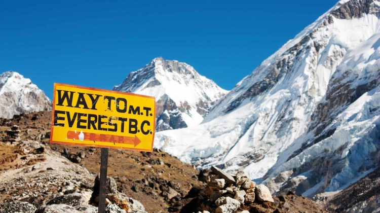 way to mount everest costs